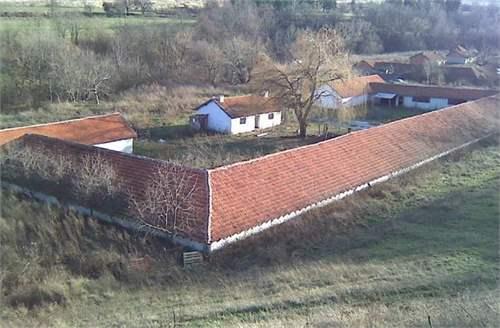 Farming and Agriculture Vidin, Bulgaria