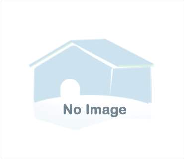 Studio  Residential Property in Trichur, India