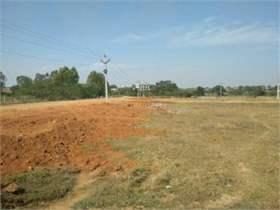 Farmland in Telangana | Global Property Guide